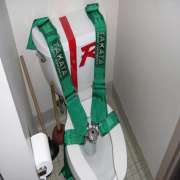 Five Point Harness on Toilet
