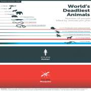 Worlds Deadliest Animals